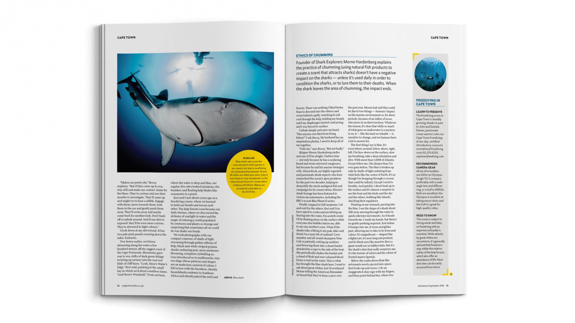 A4-Magazine-DPS-NGT-ADV-swim-2