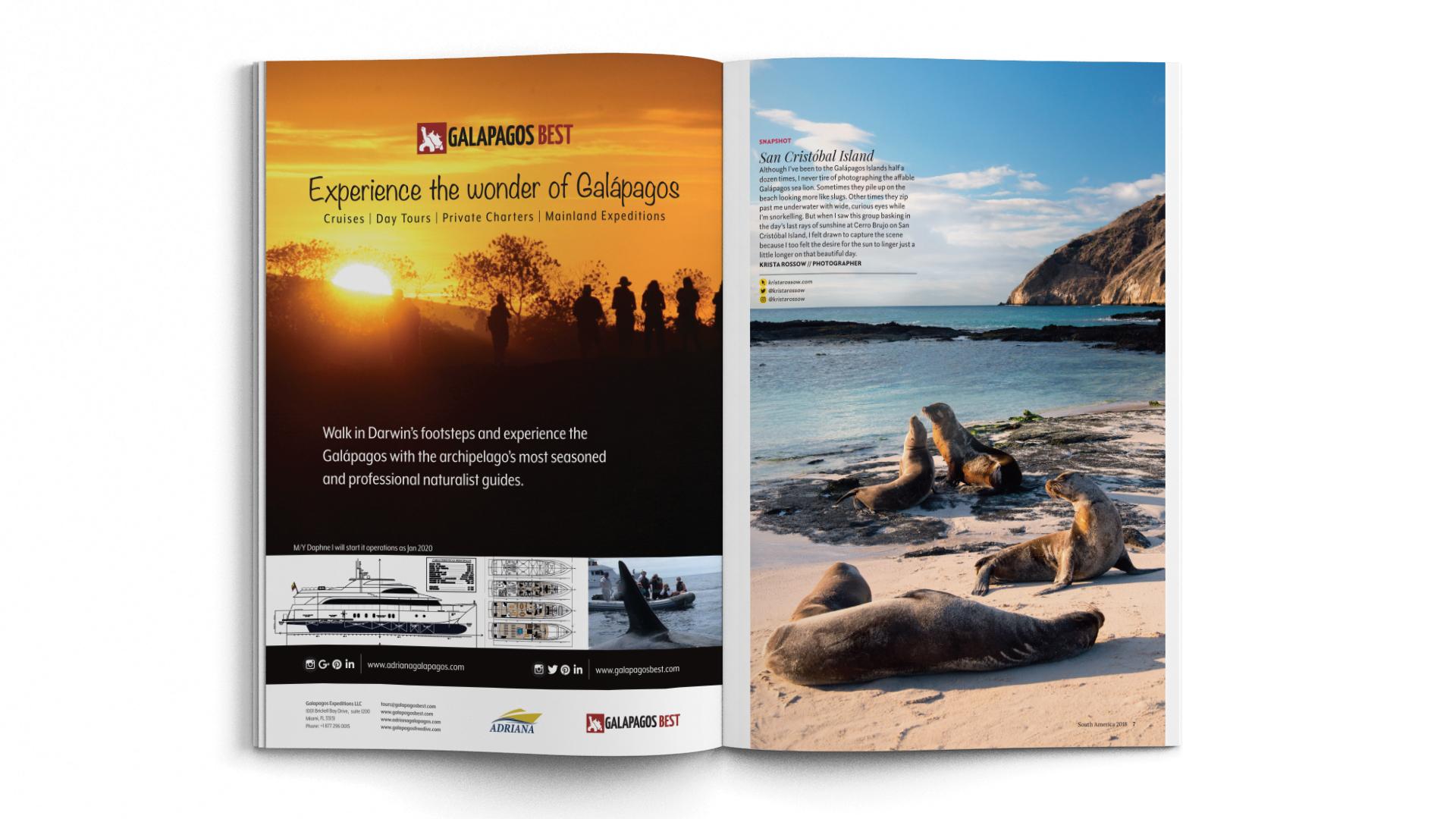 A4-Magazine-DPS-NGT-SA-Snapshot